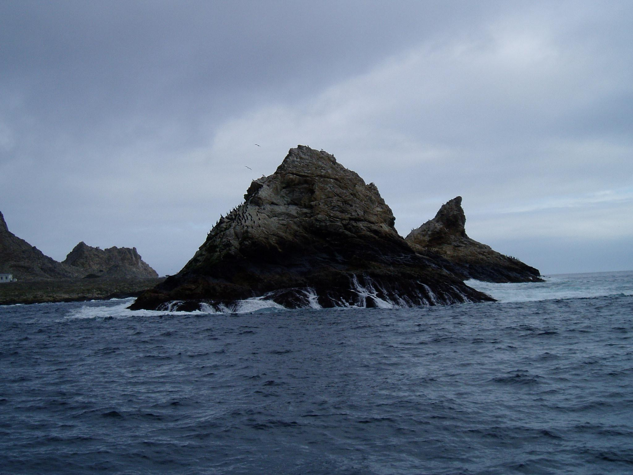 farallon island rodenticide A 2010 survey estimated the mouse population on the farallon islands was close to 200,000 individuals  the use of the rodenticide brodifacoum has attracted the.
